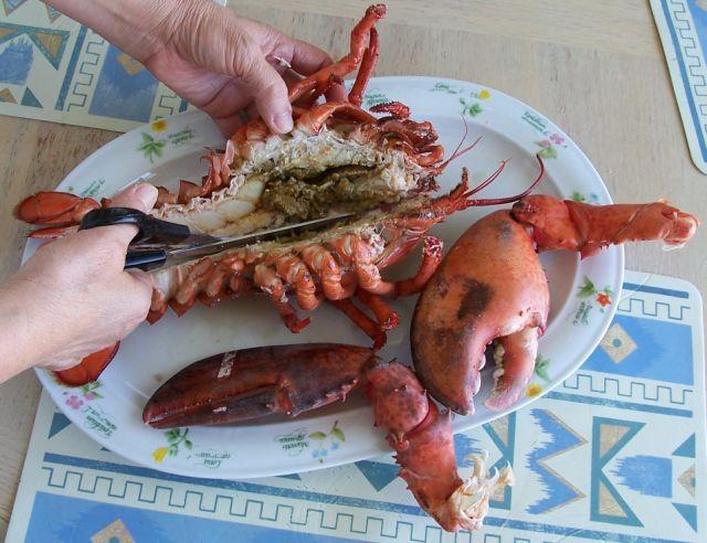 38-2剪開並清理龍蝦.