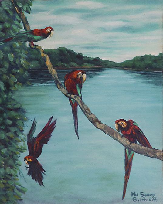 096四鸚鵡