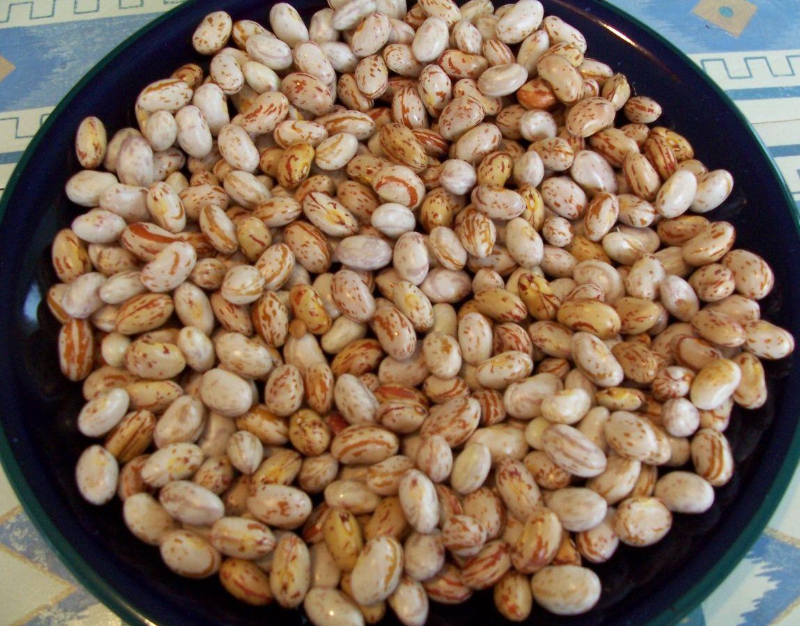 家常素食 28-1新鮮花豆仁