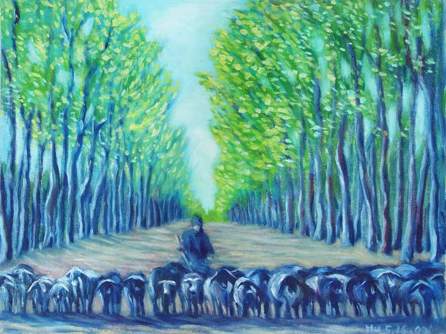 55   羊兒大道行