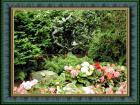 布查花園Burchart Gardens 26
