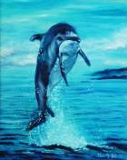 025 跳躍的海豚